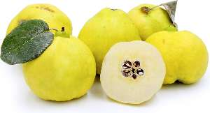 Quince nutritional value