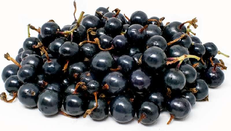 Black currants calories