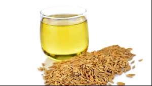 Rice bran oil nutritional value