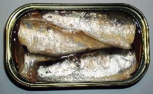 Sardine (Canned) nutritional value