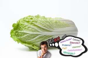 How Many Calories Are In A Napa Cabbage